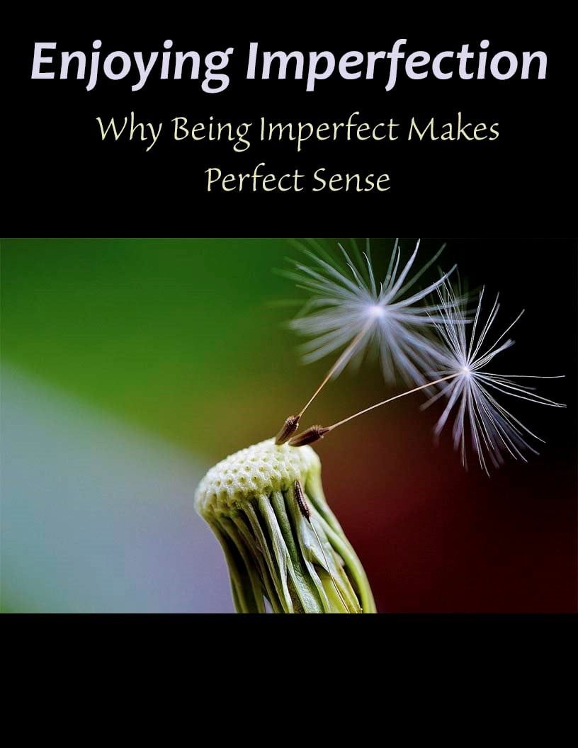 Enjoying Imperfection: Why Being Imperfect Makes Perfect Sense