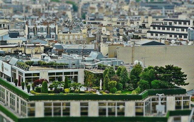 6 Benefits of Having a Roof Garden